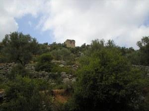 Palestine 045